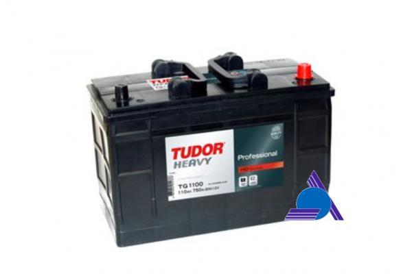 TUDOR TG1100